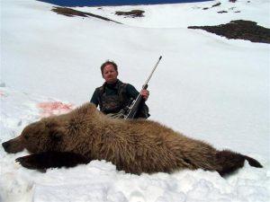 bear.h14