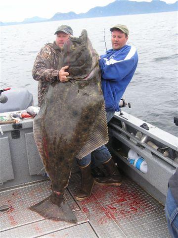 Ketchikan Salmon Fishing & Halibut Fishing AdventuresAlaskan Halibut