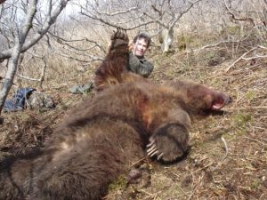 Brown-bear-2008-3